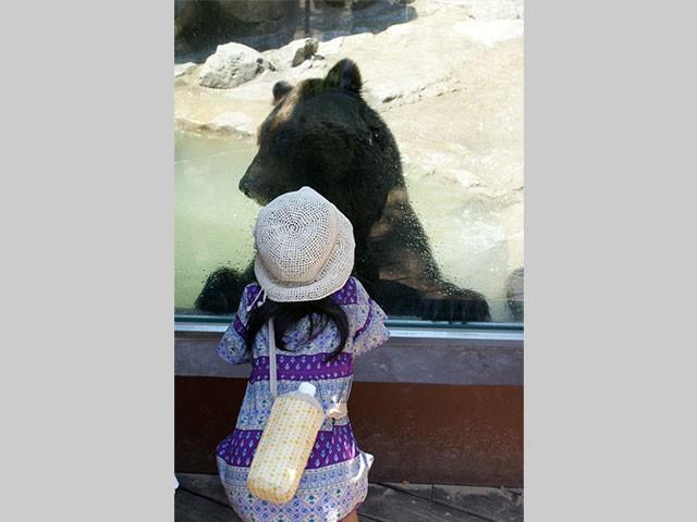 神戸市立王子動物園クマ舎
